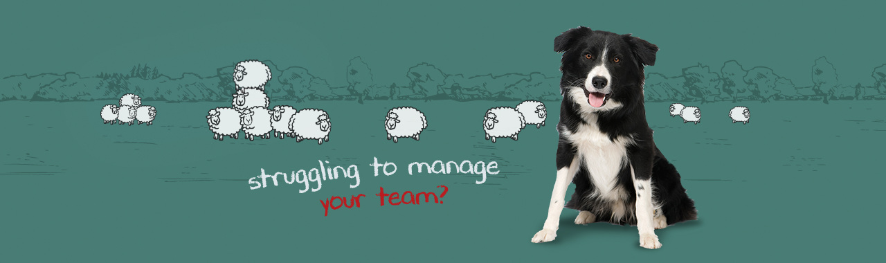 MANAGING DIFFICULT TEAMS workshops